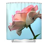 Life Is All Roses And Blue Sky Shower Curtain