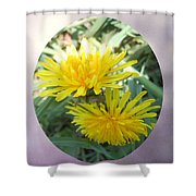 Life Is Made Up Of Dandelions Shower Curtain