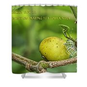Life Is Simple Shower Curtain