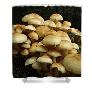 Life Of The Forest Floor Shower Curtain
