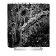 Life Remains Shower Curtain