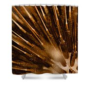 Lifecycle 1 Shower Curtain