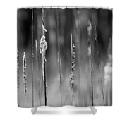Life's Ripple - Center Shower Curtain by Steven Santamour