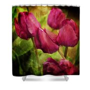 Life's Song - Image Art By Jordan Blackstone Shower Curtain