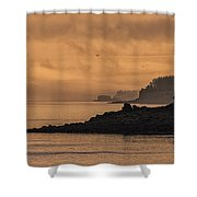 Lifting Fog At Sunrise On Campobello Coastline Shower Curtain