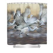 Liftoff  Shower Curtain