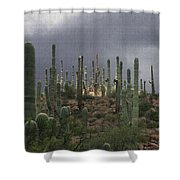 Light At The Top Shower Curtain