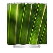 Light Filter Shower Curtain