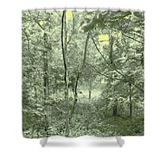 Light Forest Scene Shower Curtain