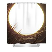 Light From The Moon Shower Curtain
