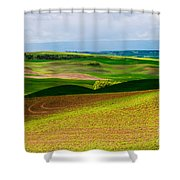 Light Shadow And Color Shower Curtain