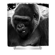 Light Snack Shower Curtain