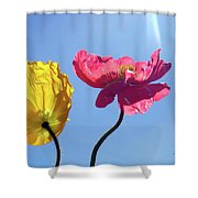 Light Stream Shower Curtain