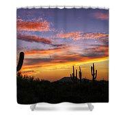 Light Up The Sky Southwest Style  Shower Curtain