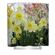 Light Yellow Daffodils Shower Curtain