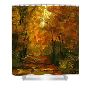 Lighted Trail Shower Curtain
