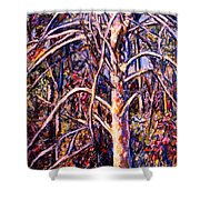 Lightening Struck Tree Shower Curtain