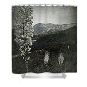 Lighting The Way Shower Curtain
