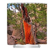 Lighting Victim At Devils Tower Shower Curtain