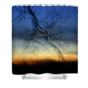 Lightning Branches Shower Curtain