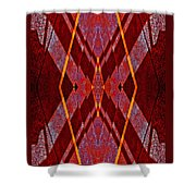 Lightning Gives Me A Pass 2014 Shower Curtain