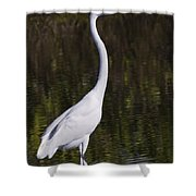 Like A Great Egret Monument Shower Curtain