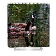 Lila Goose And The King Shower Curtain