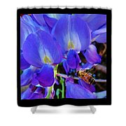Lilac Blossom And Honey Bee Shower Curtain