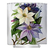 Lilac Clematis Shower Curtain