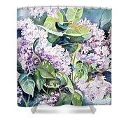 Lilac Delight Shower Curtain