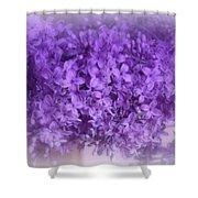 Lilac Fantasy Shower Curtain by Kay Novy