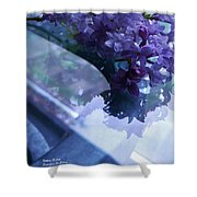 Lilac Glass Shower Curtain