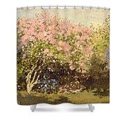 Lilac In The Sun, 1873 Shower Curtain