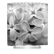Lilac Macro Shower Curtain