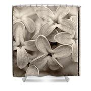 Lilac Macro Sepia Tone Shower Curtain