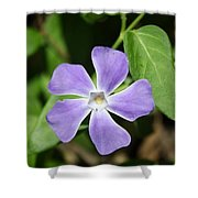 Lilac Periwinkle Shower Curtain