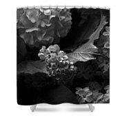 Lilacs And Hydrangeas Shower Curtain