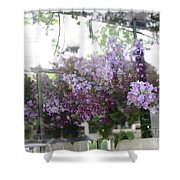 Lilacs Hanging Basket Window Reflection - Dreamy Lilacs Floral Art Shower Curtain