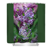 Lilacs In Lilac Vase Shower Curtain