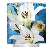 Lilies Against Blue Wall Shower Curtain