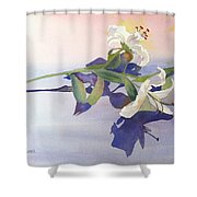 Lilies At Rest Shower Curtain by Patricia Novack