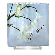 Lilies On Blue Shower Curtain