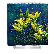 Lilies Shower Curtain by Zaira Dzhaubaeva