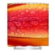 Lilium Anaconda Rain Shower Curtain