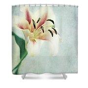 Lilium Shower Curtain