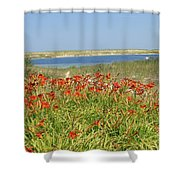 Lillies By The Lake Shower Curtain