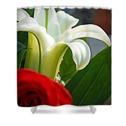 Lilly And Rose Shower Curtain