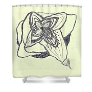 Lilly Artistic Doodling Drawing Shower Curtain