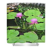Lilly Pad In Hawaii Shower Curtain