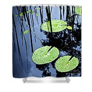 Lilly Pad Pond Shower Curtain